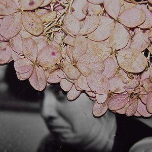 Jenna Wiggins's Photo