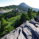 Let's Explore Grandfather Mountain!'s picture