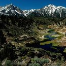 Sierra Nevadas Camping Trip's picture