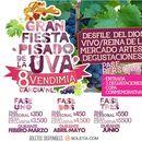Photo de l'événement Gran Fiesta Pisado de la Uva