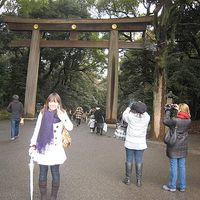 saori Hirata's Photo