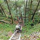 West Coast Trail's picture
