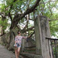 Fotos de Hazel Tung