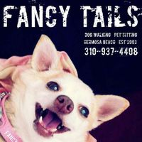 Fancy Tails's Photo