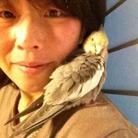 Noriko Yoshino's Photo