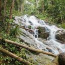 Wondering JunglexEat: Hiking's picture
