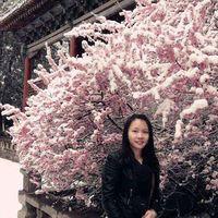 艺 王's Photo