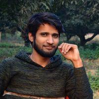 Vibhu Singh's Photo