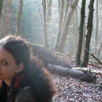 Sandra Schwarzwalder's Photo