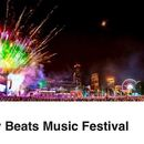 Shaky Beats Festival's picture