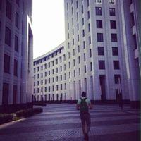 Yura Yu's Photo