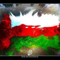 Ahmed Alsaidi's Photo