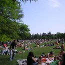 Sunday 27 th May afternoon @ Giardini Margherita's picture