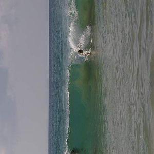 Maui Surf's Photo