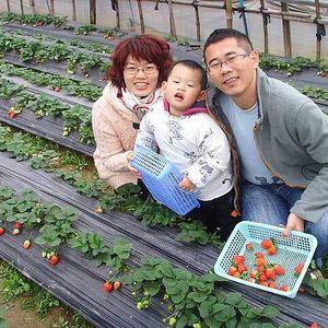 04wangqin163.com Wang's Photo