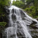 Valle Pesio Waterfalls :-O's picture
