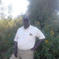 Handson marabu's Photo