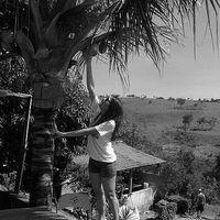 Pollyana Dietz's Photo