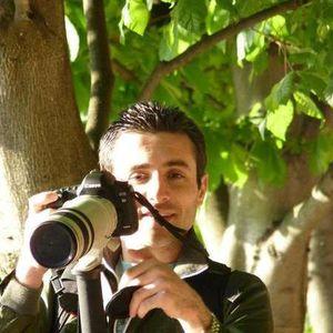 Diako Yazdani's Photo