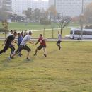 Ultimate Frisbee game's picture
