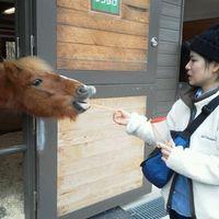 Yukino Kinjo's Photo