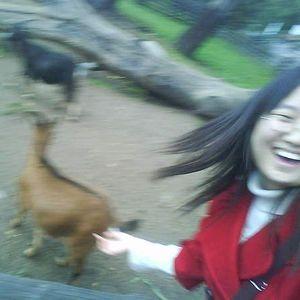 Xintong Liu's Photo