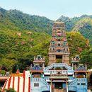 Maruthamalai Trek On Steps's picture