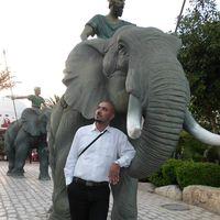 Sid Ahmed Sid Ahmed's Photo