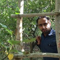 Muhammad Anvar Mollazaei's Photo