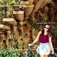 Amanda Luz's Photo