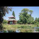 Victoria Park Social's picture