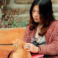 YUKI CHENG's Photo