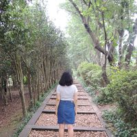 June Li's Photo