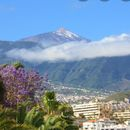 Road trip to explore Tenerife and Teide's picture