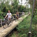 🚲 Monthly Cycling at Bangkrachao on 13rd,  May's picture
