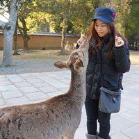 Rachel Ip's Photo