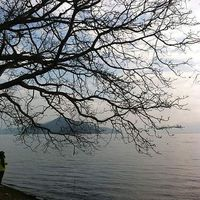 Le foto di Heika Han