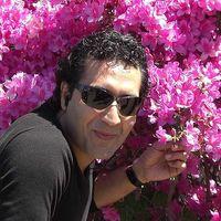 masoud Jafari's Photo