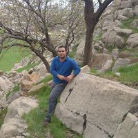 Behnam Afshar's Photo