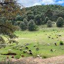 Nature Hiking, Caminata En La Sierra's picture