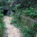 Foto de Hiking through WWII tunnels in 城門 Shing Mun