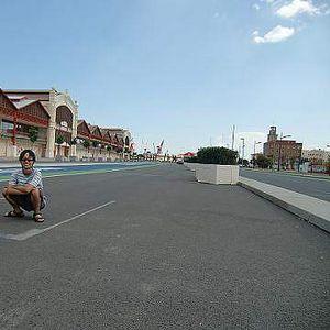 Ryo Tanaka's Photo