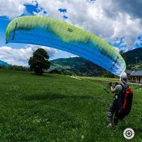 Michael Neumayer's Photo