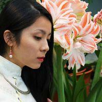 Anh Tho Nguyen Vu's Photo