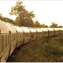[ TRAVEL IDEA ] Jungle Train to Kelantan's picture