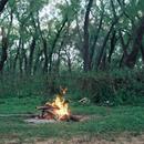 Campamento En La Isla's picture
