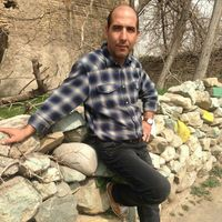 hamid golmohammadi's Photo