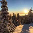 Mt Spokane Snowshoe's picture