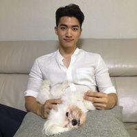 Joshua Chin's Photo