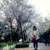 Hye Shin Kim's Photo